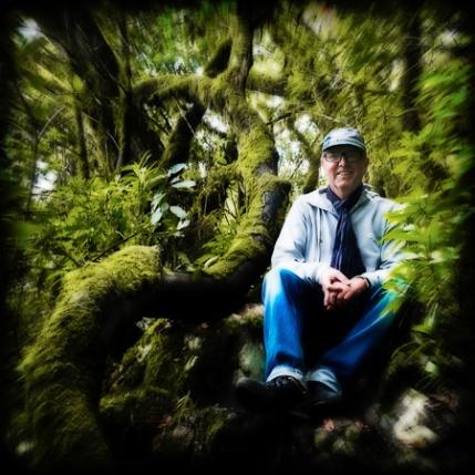 Alexius in the rainforest of la Gomera.